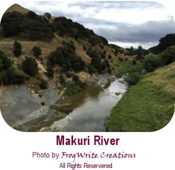 Views of the Wairarapa